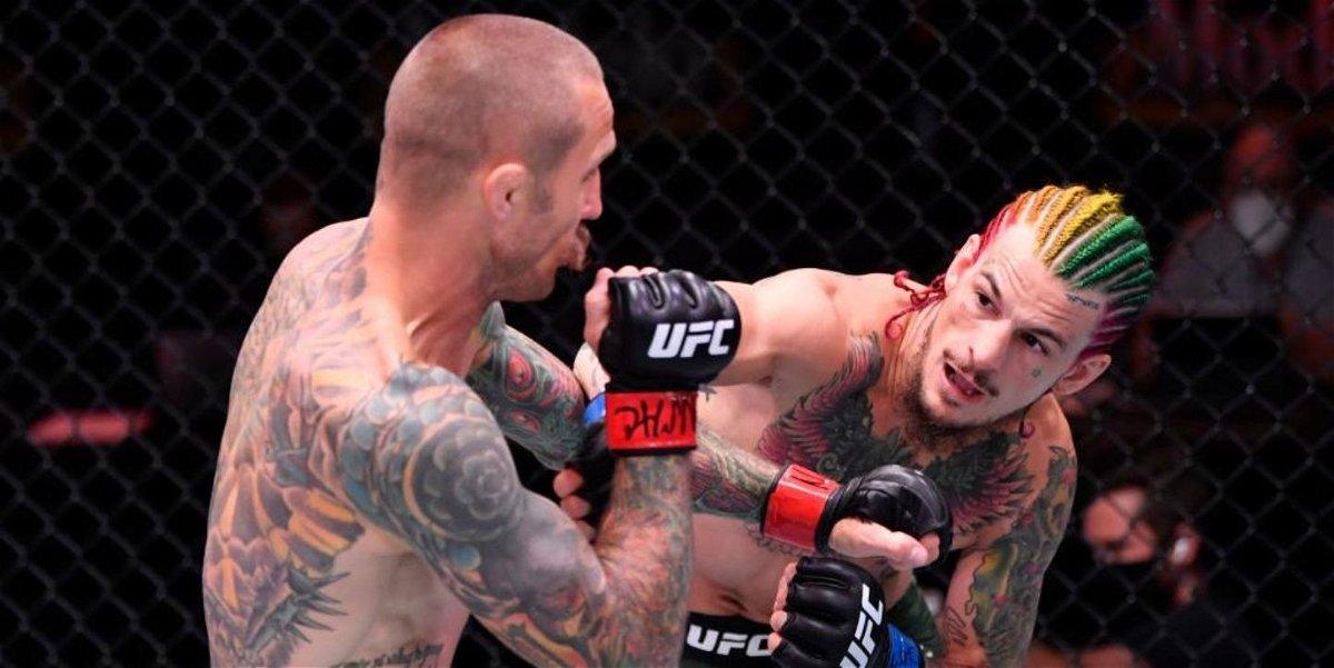 WATCH: Insane 'Walk-Off' KO by Sean O'Malley Stuns Everyone at UFC ...