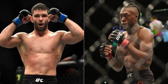 UFC Fight Night: Overeem vs. Sakai