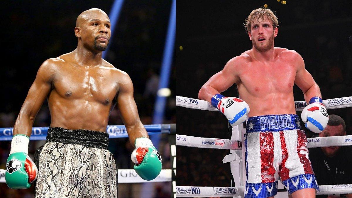 "British Boxer Says Logan Paul Needs ""One Shot"" to Crush Floyd Mayweather - Essentially Sports"