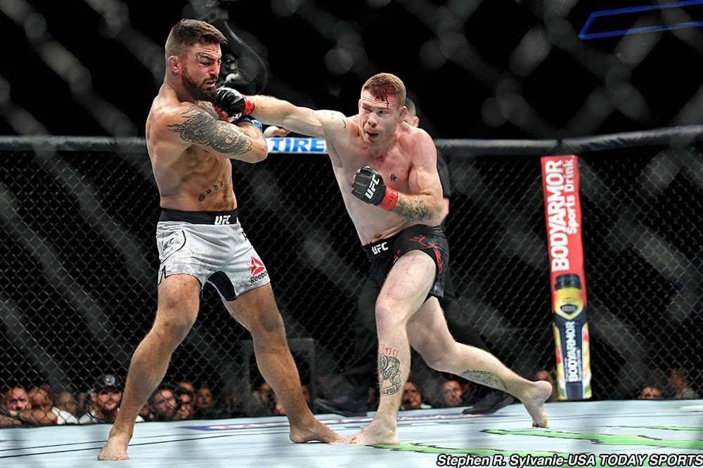 UFC 242: Edson Barboza vs Paul Felder Prediction